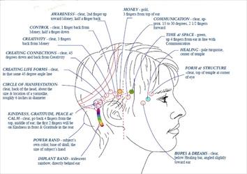 head-chart_R